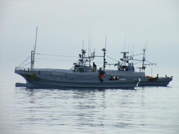 Dscf0305